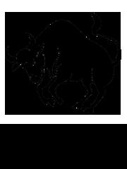 Výsledek obrázku pro ´býk horoskop